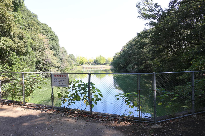 赤坂地区公園