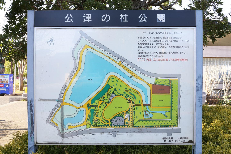 公津の杜公園