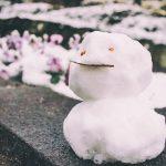 成田で雪がふりました