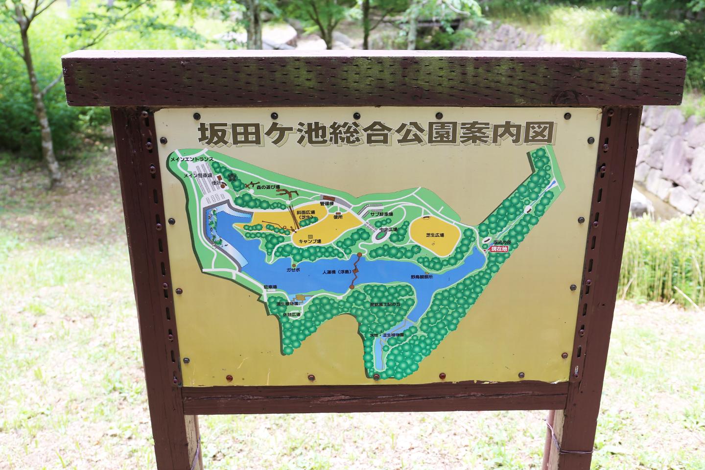 坂田ケ池総合公園