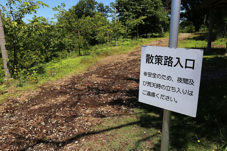 成田 さくらの山
