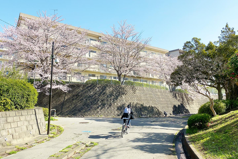 成田 散歩