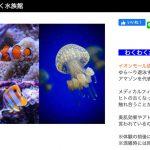 成田 わくわく水族館 イオンモール